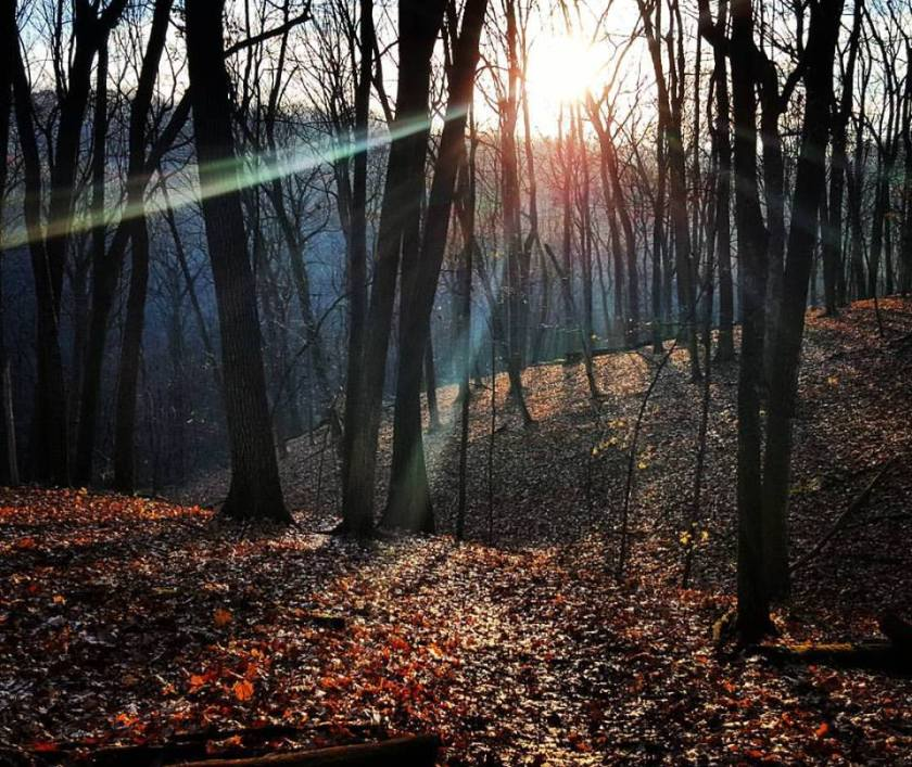 Blue Mound State Park in November. The beauty of the trail is at the center of my desire to run.